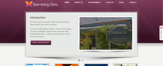 Website Launch – Sternberg Clinic